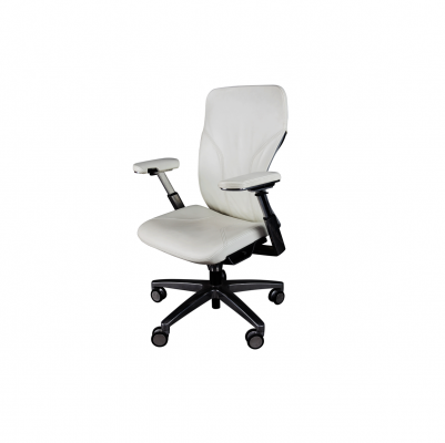 Home & House Office Furniture: Display & Storage Office Chair